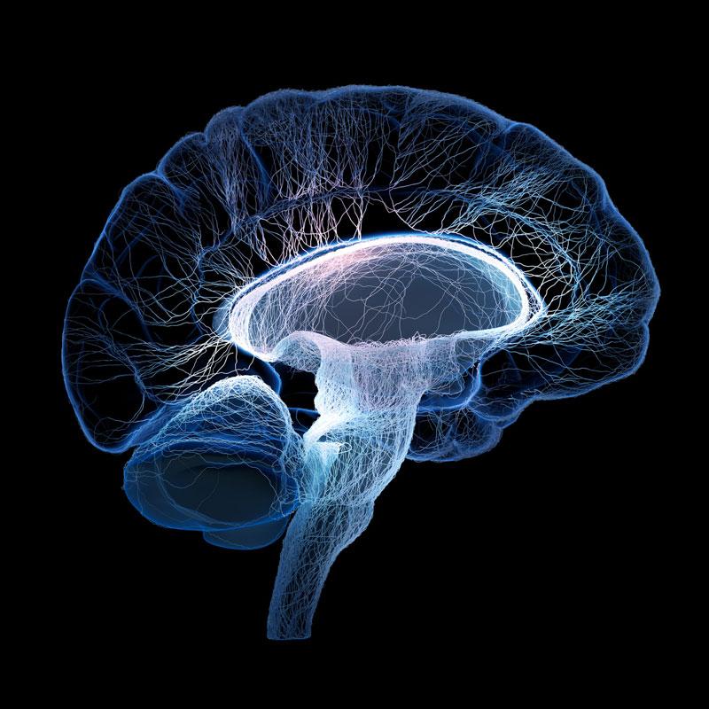 Hirn als Symbol für Hypnosetherapie
